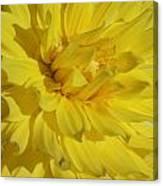 Yellow Day Canvas Print