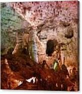 Carlsbad Cavern Canvas Print