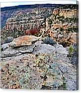 Colorado National Monument Canvas Print
