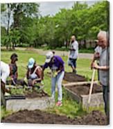 Community Gardening Canvas Print
