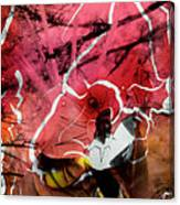 Film Creations-native Canvas Print