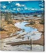 Nisqually Wildlife Refuge Canvas Print