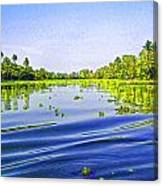 Ripples On The Saltwater Lagoon Canvas Print