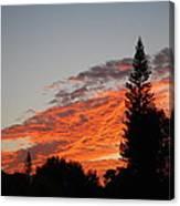 Skyscape Canvas Print