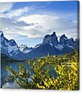 Springtime In Torres Del Paine Canvas Print