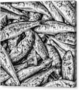 Tile Of Fishes Canvas Print