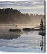 110307p099 Canvas Print