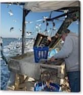 Shrimp Fishing Canvas Print