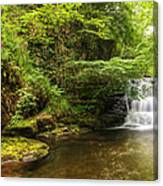 Stunning Waterfall Flowing Over Rocks Through Lush Green Forest  Canvas Print