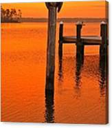 12001 Weeks Bay Pelicans Canvas Print