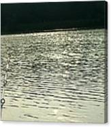 1259c Canvas Print