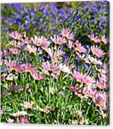 Background Of Colorful Flowers Canvas Print