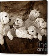 Vintage Festive Puppies Canvas Print
