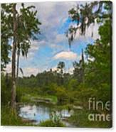Lowcountry Marsh Canvas Print