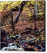 South Branch Quantico Creek Canvas Print