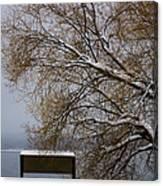 140303a-13 Winter Color Canvas Print