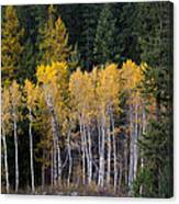 Guardians Of Trestle Creek  -  141102a-138 Canvas Print
