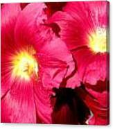 Loveflowers Canvas Print