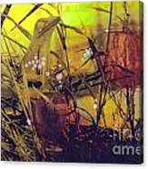 Film Creations-native Canvas Print