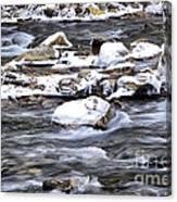 Winter Along Williams River Canvas Print