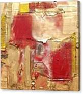 ...............................assemblage Canvas Print