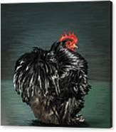 17. Black Frizzle Cochin Bantam Canvas Print