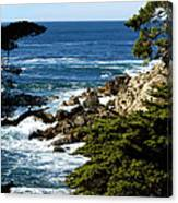 17 Mile Drive Iv Canvas Print