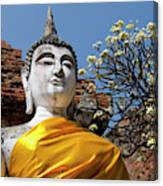Thailand, Ayutthaya Canvas Print