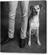 Portrait Of Red Bone Coon Mix Dog Canvas Print
