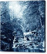 1900 Cyanotype New England Woods Canvas Print