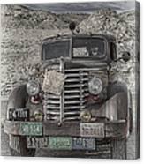 Desert Traveler Canvas Print