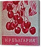1956 Bulgarian Wild Cherry Stamp Canvas Print
