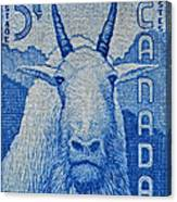 1956 Canada Mountain Goat Stamp Canvas Print
