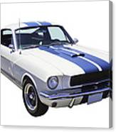 1965 Gt350 Mustang Muscle Car Canvas Print