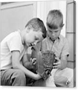 1970s Two Boys Seriously Inspecting New Canvas Print