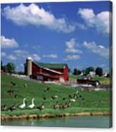 1990s Amish Family Farm Bunker Hill Canvas Print