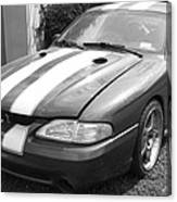 1996 Mustang Cobra In Black And White Canvas Print