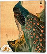 19th C. Japanese Peacock Canvas Print