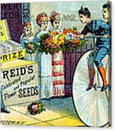 19th C. Reid's Flower Seeds Canvas Print