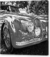 1954 Jaguar Xk 120 Se Ots  Bw Canvas Print