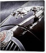 1964 Jaguar Mk2 Saloon Hood Ornament And Emblem Canvas Print