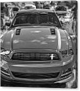 2013 Ford Mustang Gt Cs Painted Bw Canvas Print