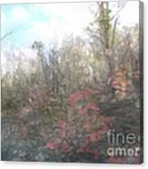 2-28 Manifestations Of Eternity Canvas Print