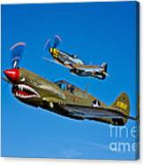 A P-40e Warhawk And A P-51d Mustang Canvas Print