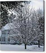 A Wintery View Along Conifer Drive In Burnt Hills Canvas Print