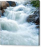 Alluvial Fan Falls On Roaring River In Rocky Mountain National Park Canvas Print
