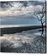 Alone Canvas Print