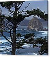 Along The Oregon Coast Canvas Print