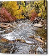 American Fork Canyon Creek In Autumn - Utah Canvas Print