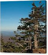 Appalachian Mountains From Mount Mitchell  Canvas Print